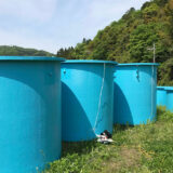 青いタンク